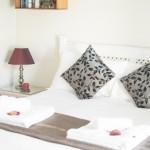Kiwi Room 3